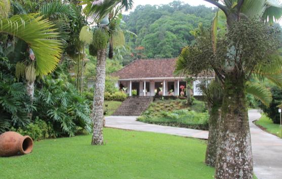 Activité plein air Martinique jardin
