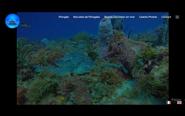 Andlo Plongée – Port de pêche la Cherry - Le Diamant – Martinique