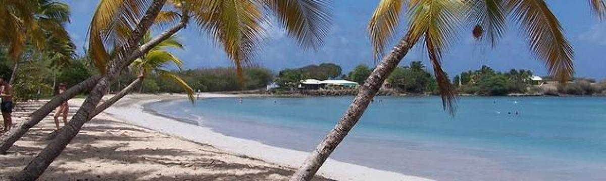 Plage Martinique annuaire