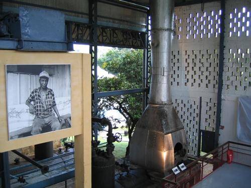 Distillerie clement Martinique