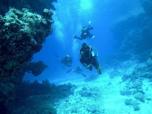 Natiyabel Plongée, plongée et randonnée à Sainte-Anne en Martinique
