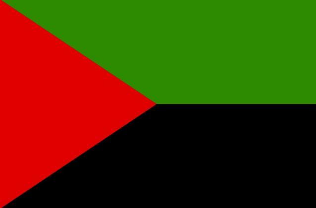 Drapeau martinique nationaliste rouge noir vert