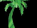Logo vsvm 200pix