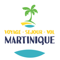Inscription Annuaire Martinique - Solution Marketing digital SEO Martinique