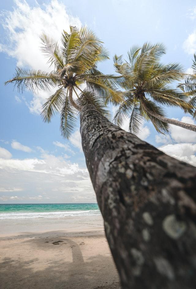 Martinique decalage horaire