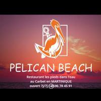 Pelican beach martinique